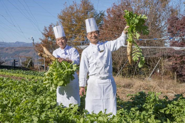 自家農園朝採り冬野菜